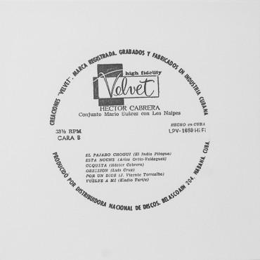 """Untitled. From """"Velvet"""" Series"""